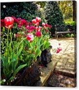 Tulips And Bench Acrylic Print