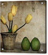 Tulips And Green Pears Acrylic Print
