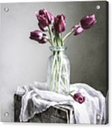 Tulips And Light Acrylic Print