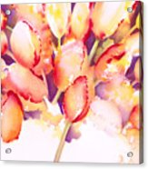 Tulips Are People Iv Acrylic Print