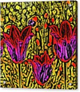 Tulips Are Tulips Acrylic Print