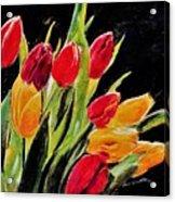 Tulips Colors Acrylic Print