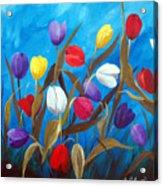 Tulips Galore II Acrylic Print