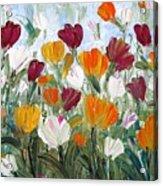 Tulips Garden Acrylic Print