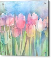 Tulips In A Row Acrylic Print