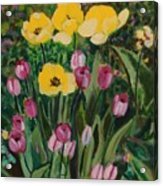 Tulips In The Capitol 2 Acrylic Print