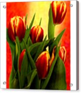 Tulips Jgibney Signature  5-2-2010 Greenville Sc The Museum Zazzle For Faa20c Acrylic Print