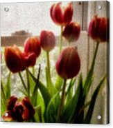 Tulips Acrylic Print by Karen Scovill