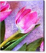 Tulips Meets Texture Acrylic Print