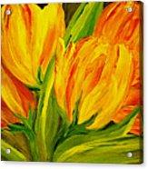 Tulips Parrot Yellow Orange Acrylic Print