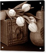 Tulips With Pear I Acrylic Print