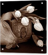 Tulips With Pear II Acrylic Print