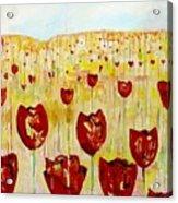 Tulpen 74 Acrylic Print