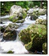 Tumbling Creek Acrylic Print