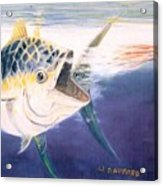 Tuna To The Lure Acrylic Print