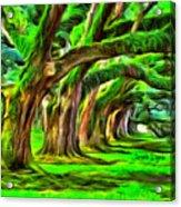 Tunnel Tree Acrylic Print