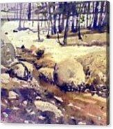 Tuolumne Stream Acrylic Print