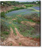 Turkey Bend Park Texas Rough Road Acrylic Print