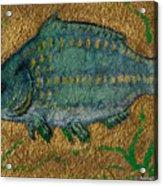 Turquoise Carp Acrylic Print by Anna Folkartanna Maciejewska-Dyba