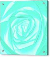 Turquoise Rose Acrylic Print