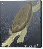 Turtle Dives Too Deep Acrylic Print