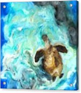 Turtle In Blue Acrylic Print