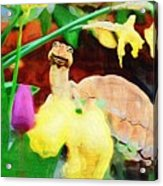 Turtle In The Tulips Acrylic Print