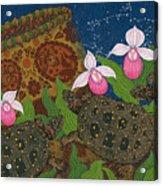 Turtle - Mihkinahk Acrylic Print
