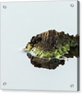 Turtle or Mountain  Acrylic Print