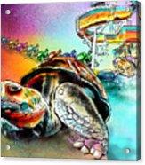 Turtle Slide Acrylic Print