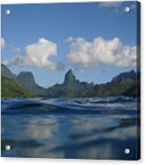 Turtle View Of Paradise Acrylic Print