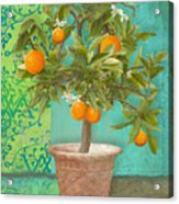Tuscan Orange Topiary - Damask Pattern 2 Acrylic Print