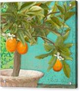 Tuscan Orange Topiary - Damask Pattern 3 Acrylic Print
