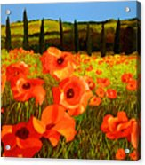 Tuscan Poppies Acrylic Print by JoeRay Kelley