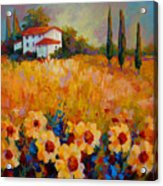 Tuscany Sunflowers Acrylic Print