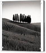Tuscany Triptych Acrylic Print