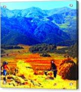 Tusheti Hay Makers IIi Acrylic Print