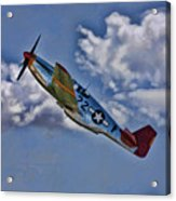 Tuskegee Mustang Red Tail Acrylic Print