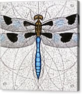 Twelve Spotted Skimmer Acrylic Print by Charles Harden
