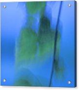 Twig And Leaf - D009634a Acrylic Print