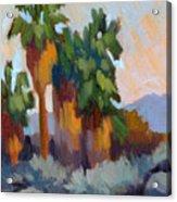 Twilight At Indian Canyons  Acrylic Print