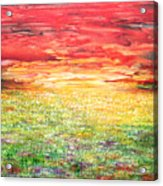 Twilight Bounds Softly Forth On The Wildflowers Acrylic Print