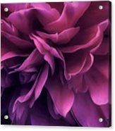 Twilight Breeze Acrylic Print