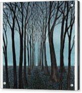 Twilight Forest Acrylic Print