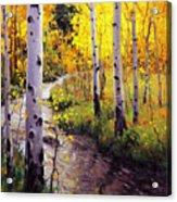 Twilight Glow Over Aspen Acrylic Print