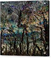 Twilight Grain Acrylic Print