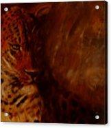 Twilight Leopard Acrylic Print