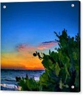 Twilight Mangrove Acrylic Print