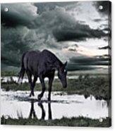Twilight Of The Gods Acrylic Print by Joachim G Pinkawa