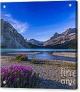 Twilight On Bow Lake, Banff National Acrylic Print